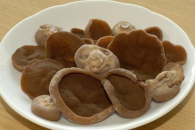 Destice chřapáčová je houba dobře využitelná vkuchyni