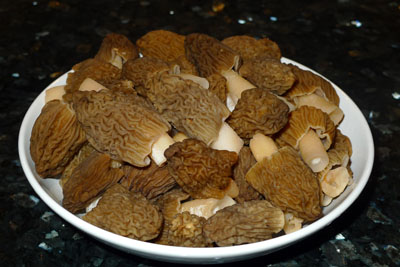 Kačenka česká je vkuchyni ceněnou houbou