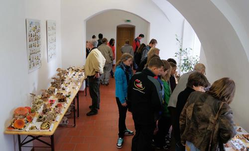 Výstava, umístěná vpěkných prosrorách zaujala každého příchozího...
