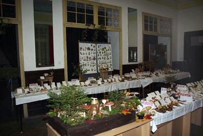 Na Hořovicku aktuálně roste na 200 druhů hub.