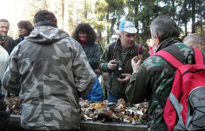 Živá diskuze onalezených houbách...