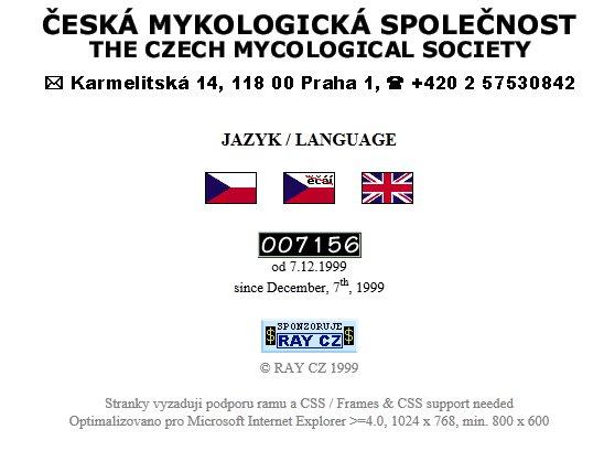 úvodní strana webu zroku 1999 - jazykový rozcestník