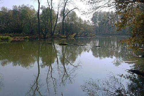 Křivé jezero - foto: Martin Kříž