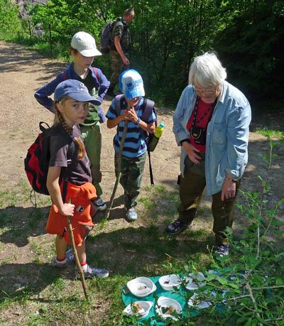 návštěvníci terénní mykologické poradny