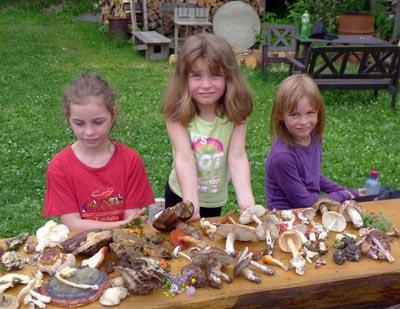adeptky houbaření ačasem imykologie