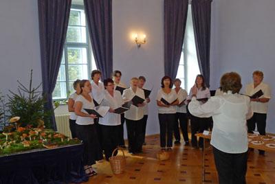 pěvecký sbor Bořivoj