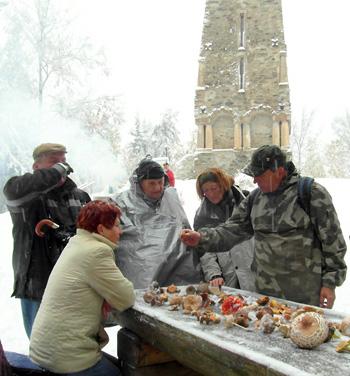 zasněžená houbařská výstavka