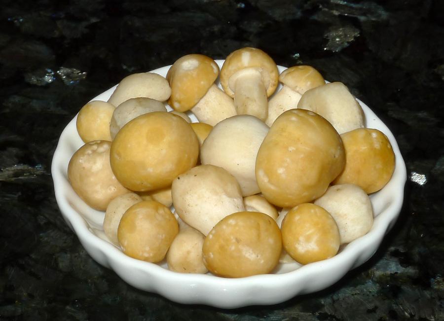 májovky patří vkuchyni kopravdovým gastronomickým zážitkům...