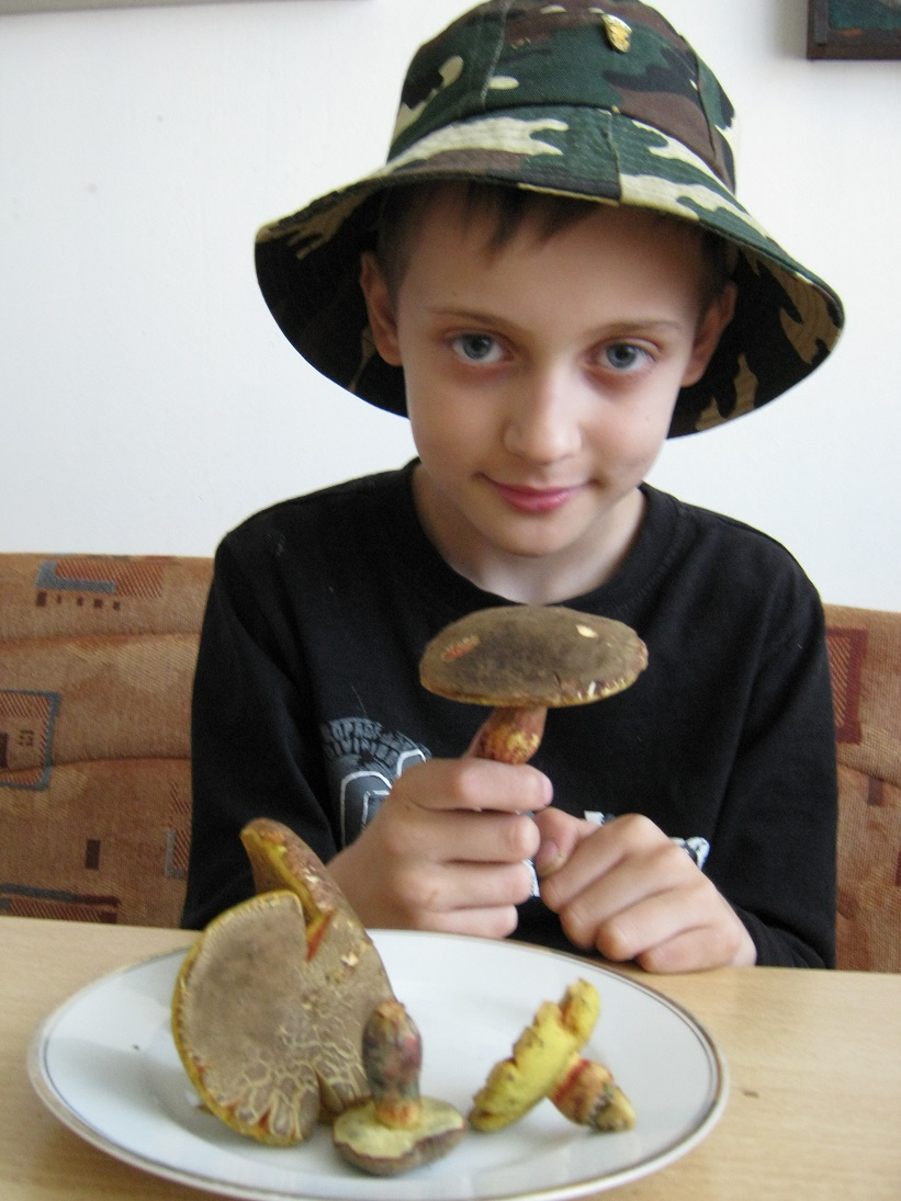 hřib žlutomasý (babka) – Xerocomellus chrysenteron, jedlý, se svým nálezcem - foto: Zdeněk Nagovský