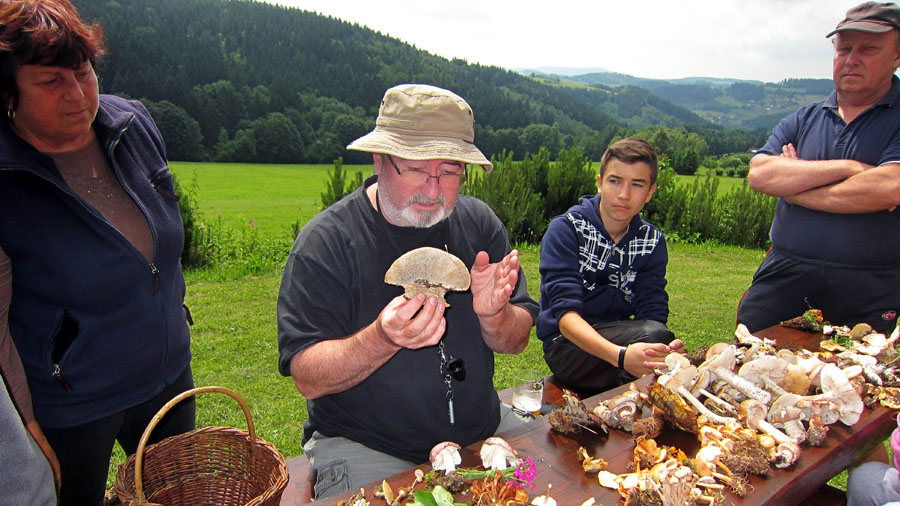 houbařská osvěta, prevence otrav jedovatými houbami aochrana hub, to jsou nejčastější zůsoby, kterými Česká mykologická společnost pozitivně působí již na několik generací českých houbařů