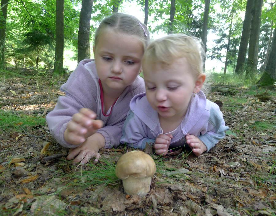 houbaření, příslovečné potěšení dospěých idětí