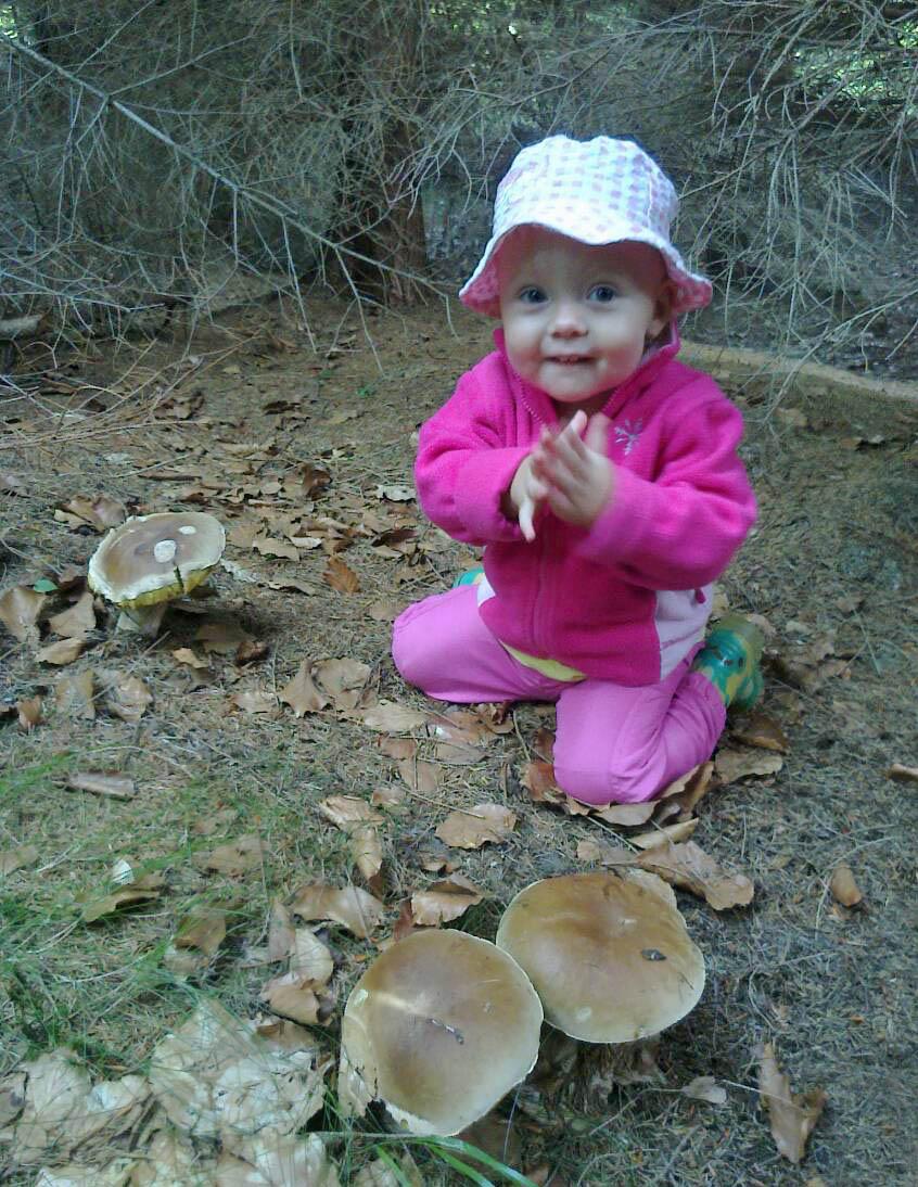 první houbařské zkušenosti...