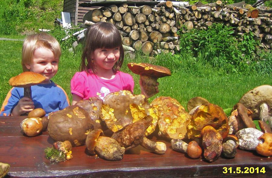 naši nejmenší houbaříci