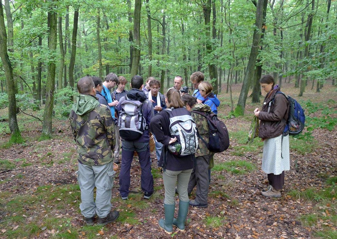 Nalezené houby účastníkům přiblížili H. Hamerská, L. Opat, A. Vít, aP. Svoboda