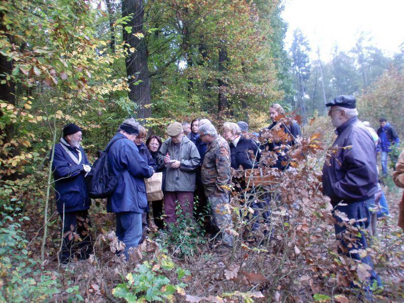 diskuze knalezeným houbám