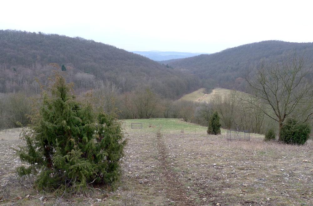 Pohled od Pan� hory k�dol� Bubovick�ho potoka