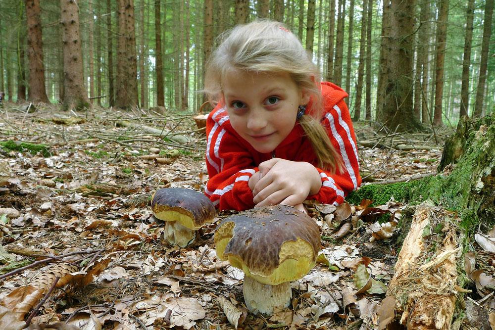 v pohádkovém lese - foto: Anita Sajfertová