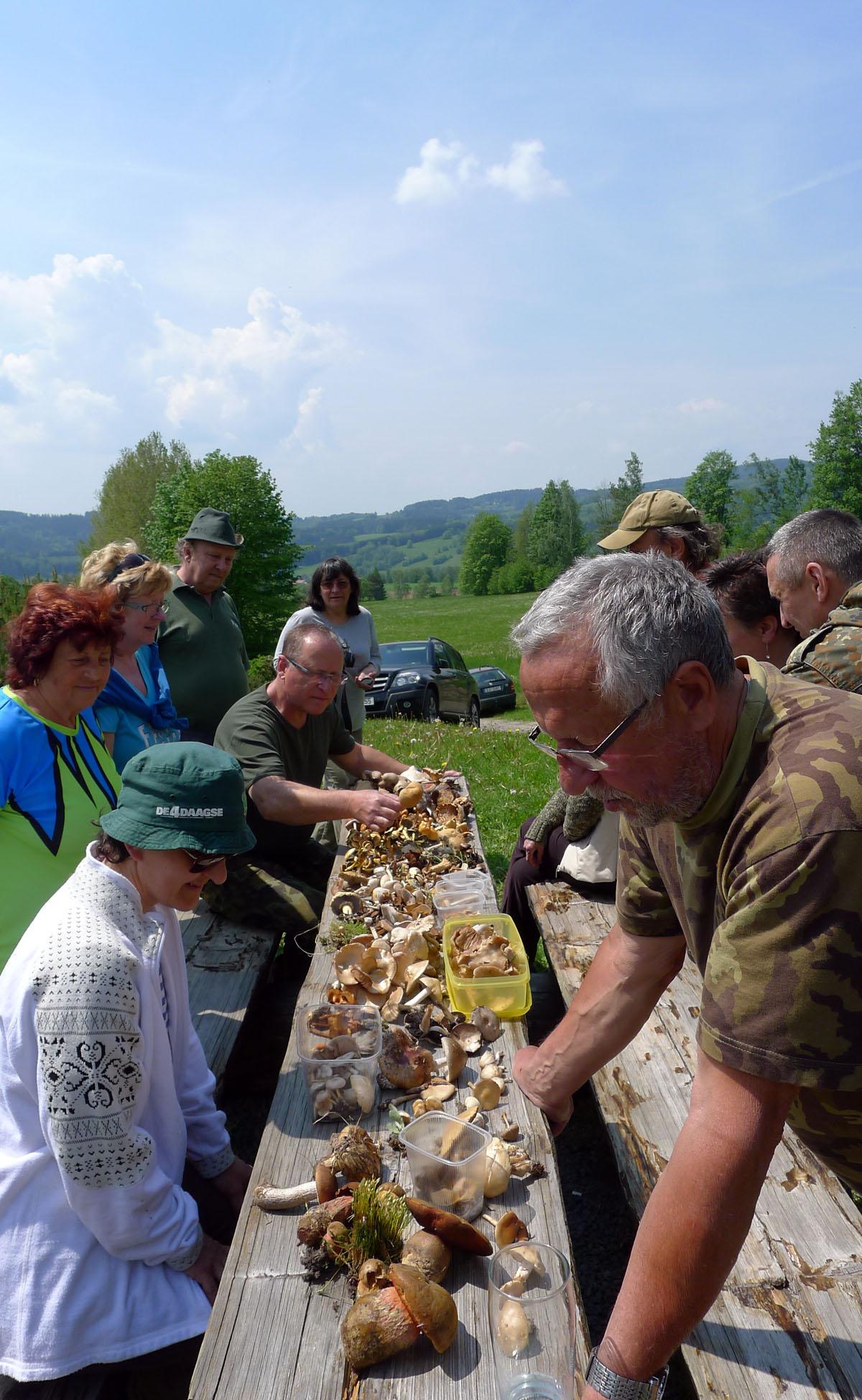 přehlídka účastníky donesených nálezů hub