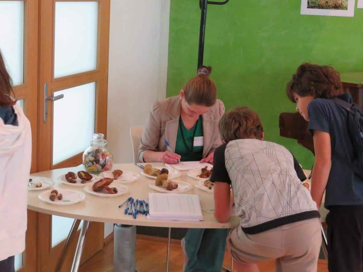 poznávací soutěž pro děti - foto: Lubomír Opat