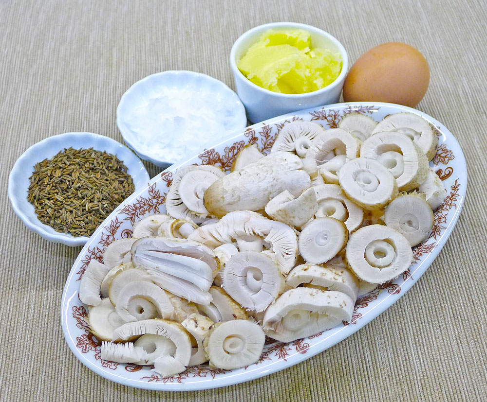 hnojníky obecné vkuchyni - foto: Aleš Vít