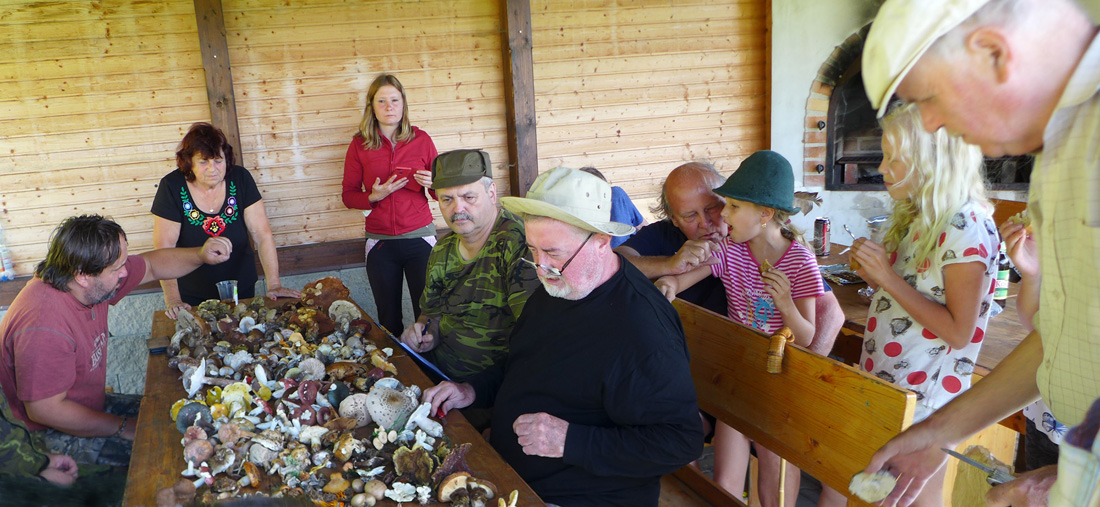Otázky, odpovědi asdílení zkušeností přítomných na téma houby ahoubaření...