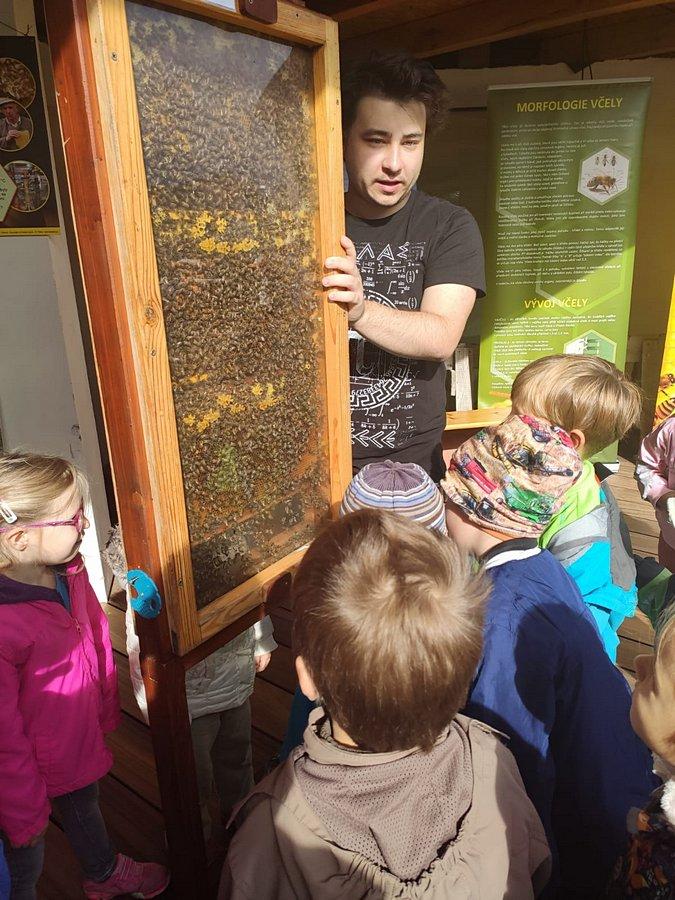 Čelákovice - včelařská část